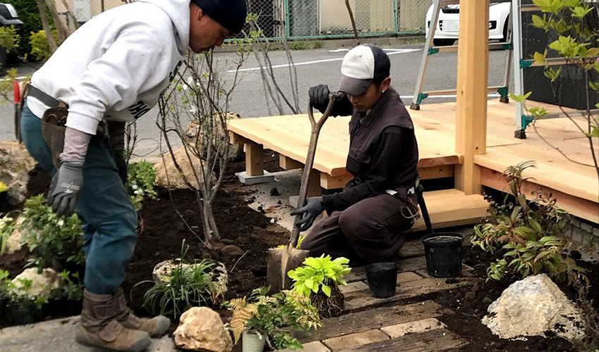 景石を並べながらグランドカバー類を植えていきます。